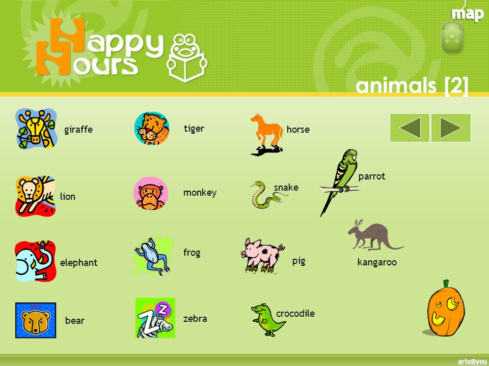 animals [2] giraffe tiger horse parrot snake monkey lion frog elephant